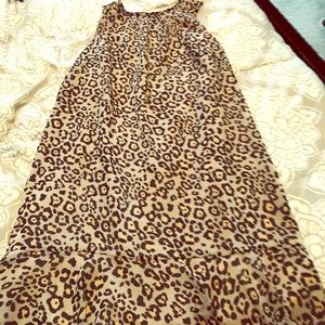 Leopard print The Loft Ann Taylor dress